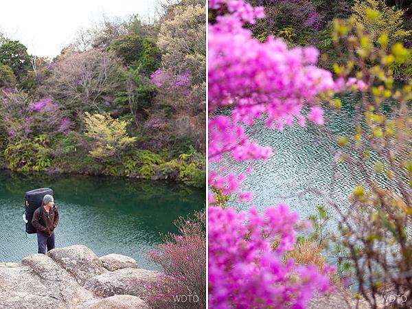 WDTD_Arashiyama_06