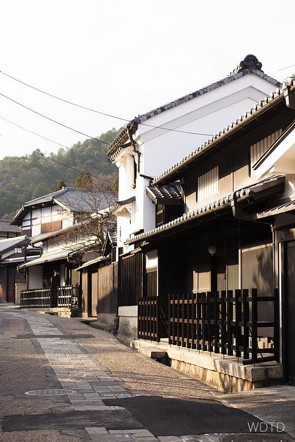 WDTD_Arashiyama_12