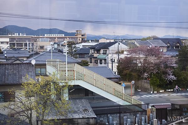 WDTD_Arashiyama_23